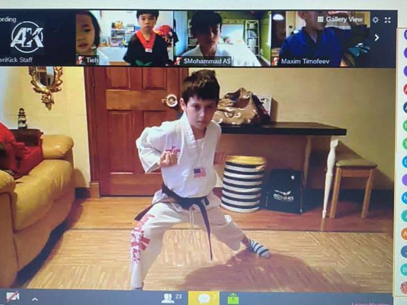 virtual martial arts classes in staten island